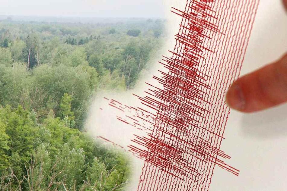 Stärkste Erdbeben des Jahres erschüttern das Vogtland