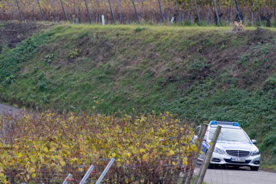 Ende 2016: Ein Streifenwagen in den Weinbergen von Endingen.