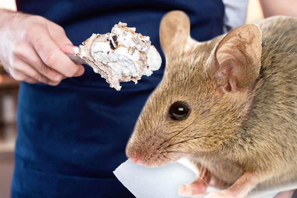Kinder brechen in Tränen aus: Kellner tritt Maus vor Eiscafé-Gästen zu Brei!