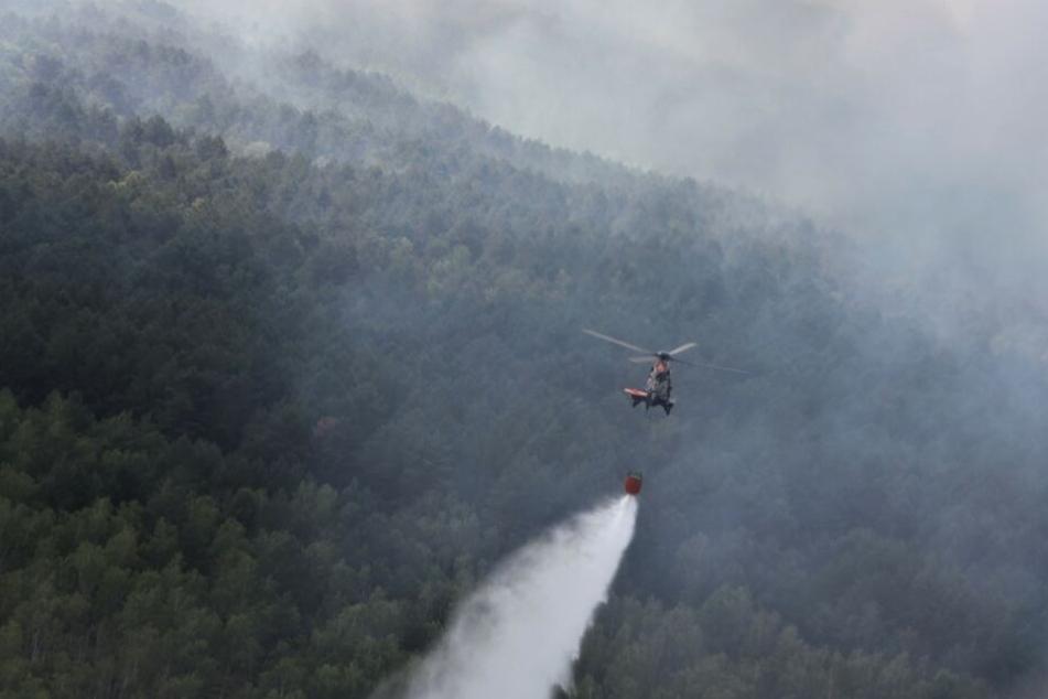 Hubschrauber der Bundespolizei bei den Löscharbeiten in der Lieberoser Heide.