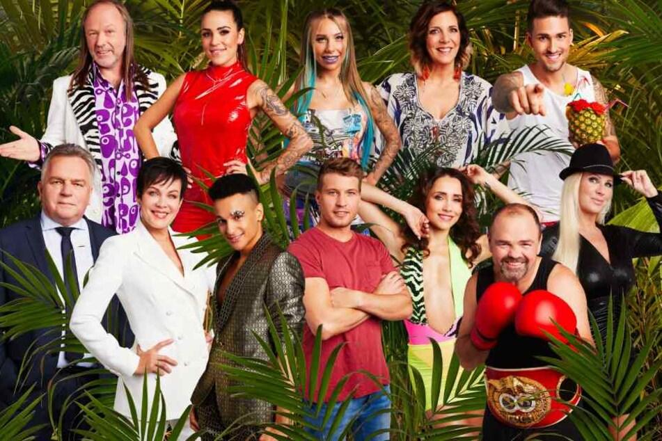 """Diese zwölf """"Promis"""" ziehen am 10. Januar in den australischen Dschungel."""