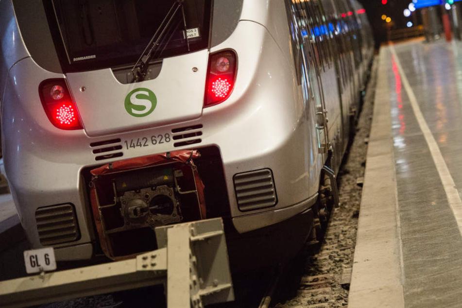 Der Lokführer schaffte es noch, die S-Bahn nach Leipzig zu fahren. Dort musste er seinen Dienst abbrechen. (Symbolbild)