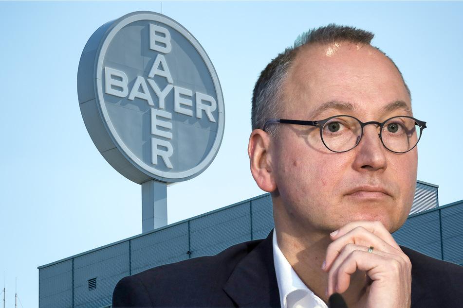 Milliarden-Verluste! Bayer will Glyphosat-Streit endlich abhaken
