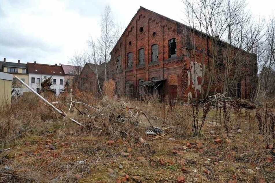 Die Fördersumme wurde im Januar bewilligt. Jetzt kann auf dem Gelände des früheren Gaswerkes an der Mühlenstraße in Werdau (bei Zwickau) der Gebäudeabriss beginnen. Großes Ziel der Sanierung sei es, das Grundwasser nicht mehr zu belasten.