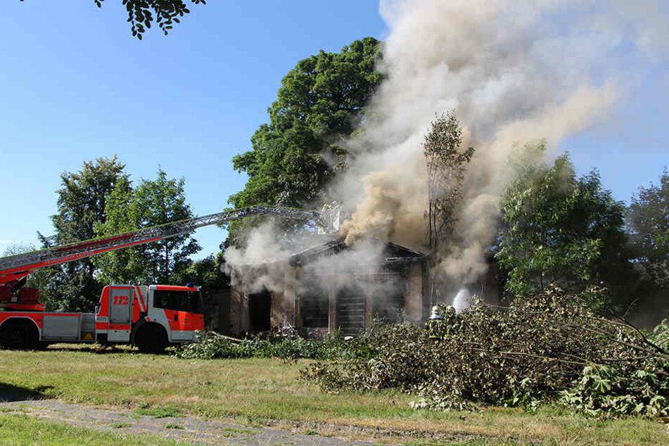 Die Feuerwehrkräfte mussten mehrere Bäumen zersägen, um überhaupt an den Brandherd zu gelangen.