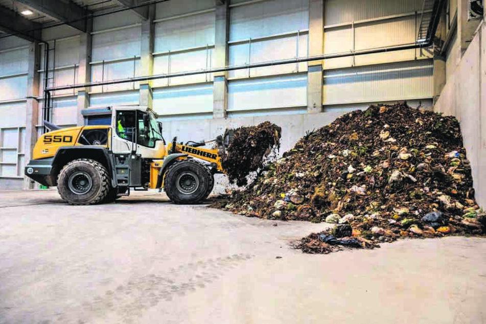 Ein Problem: Im Biomüll landen zu viele Plastiktüten, die kaum aussortiert  werden können.