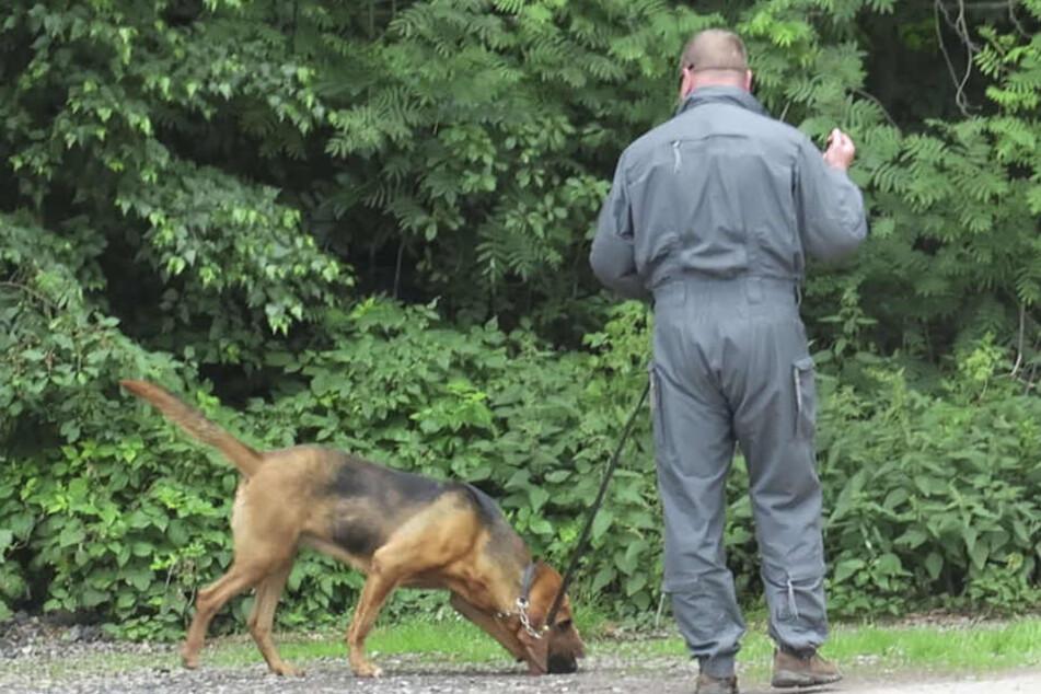 Auch mit Suchhunden war die Polizei vor Ort. (Symbolbild)