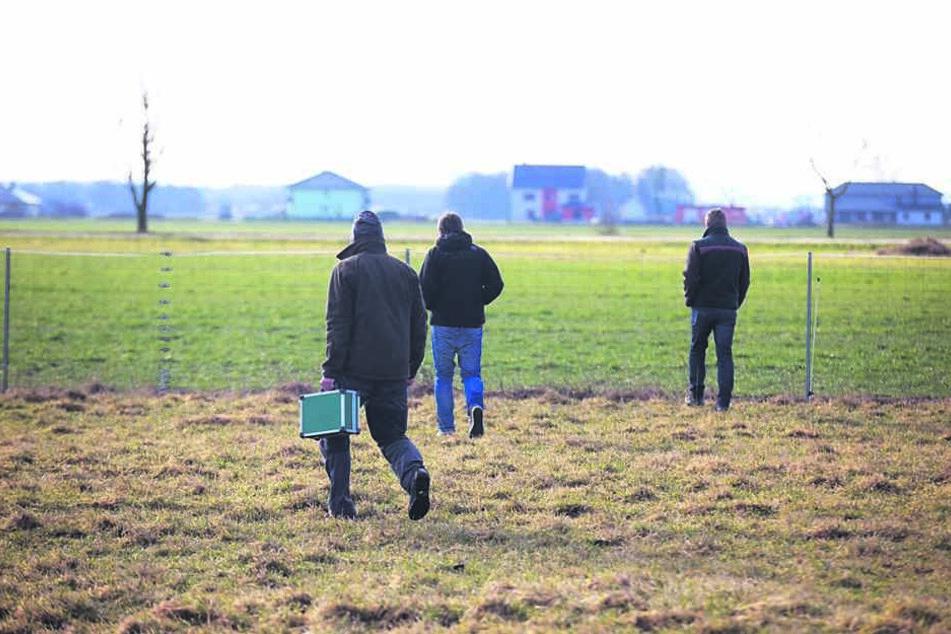 """Sollte die stromführende Litze das Überspringen nachhaltig unterbinden, könnten weitere Zäune so """"aufgerüstet"""" werden, sagt das Ministerium."""