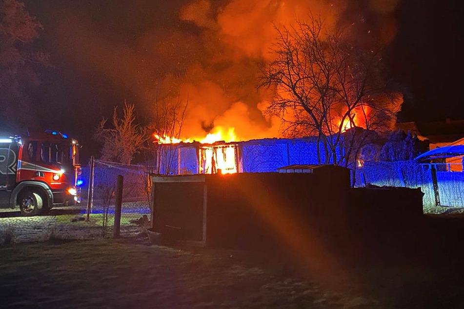 Werkstatt-Brand in Kremmen: Tierischer Held alarmiert die Anwohner