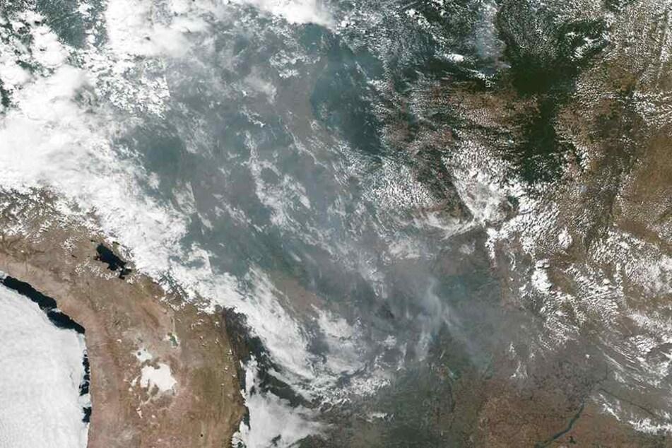 Obwohl es nicht ungewöhnlich ist, dass es in Brasilien zu dieser Jahreszeit aufgrund hoher Temperaturen und niedriger Luftfeuchtigkeit brennt, übersteigen die diesjährigen Brände alles bisher Dagewesene. Ein Farbbild aus dem Weltall zeigt das Ausmaß.