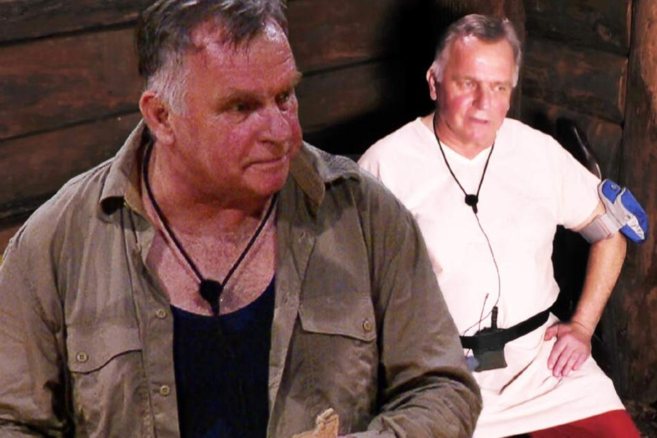 Dschungelcamp: Dschungelcamp: Kreislaufkollaps, Klinik! So geht es Günther Krause