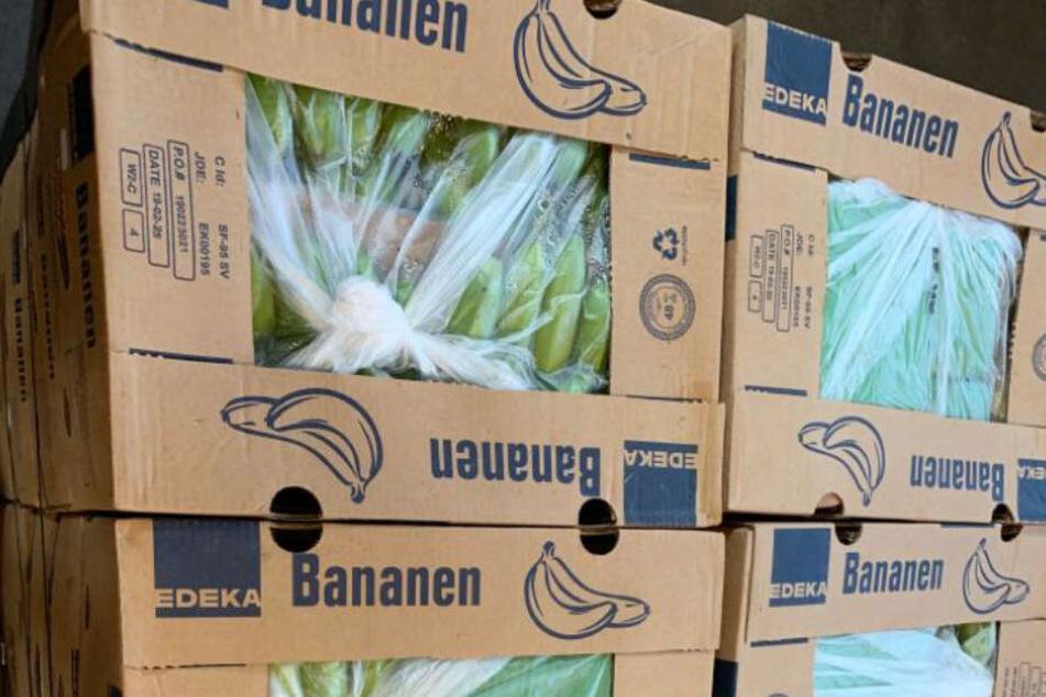 In Bananenkisten haben die Schmuggler 700 Kilogramm Kokain versteckt.
