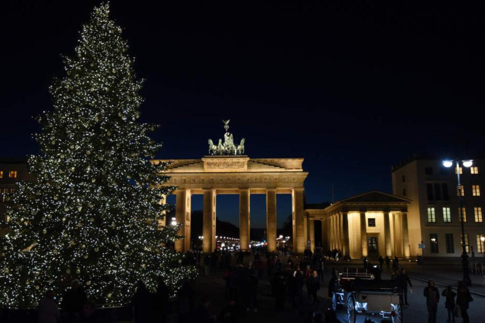 Ein Traum-Baum! Mit 30.000 LED-Lichtpunkten und 1000 weißen Baumkugeln geschmückt.