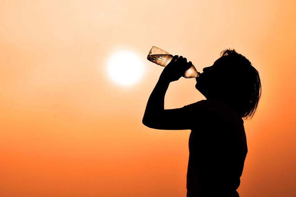 Extrem-Hitze kostet 17 Menschen das Leben