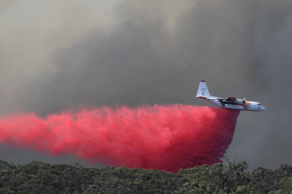 Tragödie während Buschbränden in Australien: Löschflugzeug abgestürzt, drei Tote!
