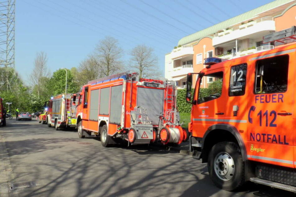 Waldbrand löst Großeinsatz der Feuerwehr aus