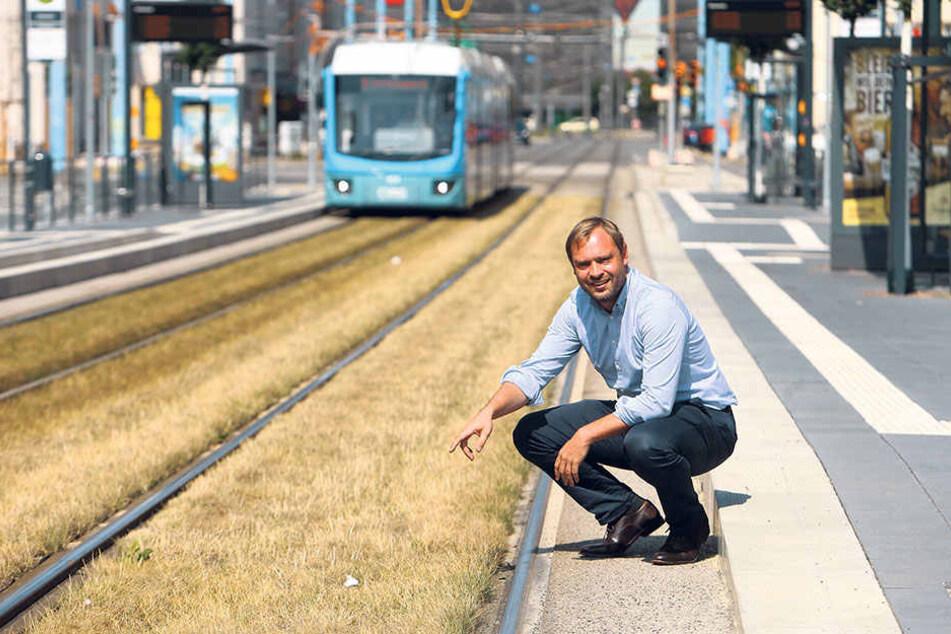 Alexander Dierks (30, CDU) findet Rasengleise wie in der Reitbahnstraße gut, auch wenn das Mähen teurer ist als bei einer normalen Wiese.