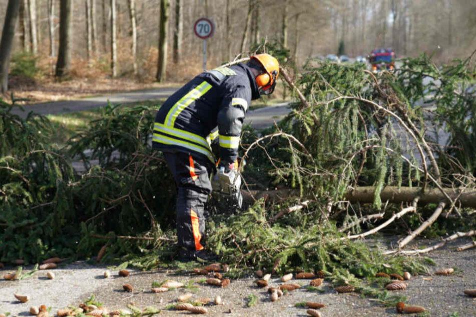 Ein Feuerwehrmann zersägt einen umgestürzten Baum auf einer Straße bei Plochingen.