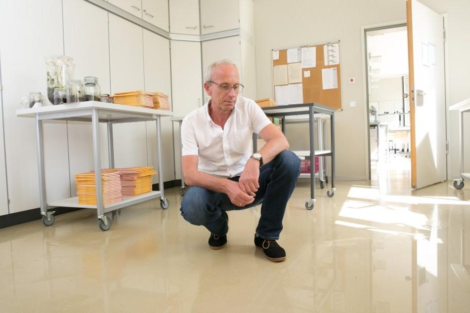 Im August gab es einen Wasserrohrbruch.  Schulleiter Jens Reiche (53) zeigte den Schaden.