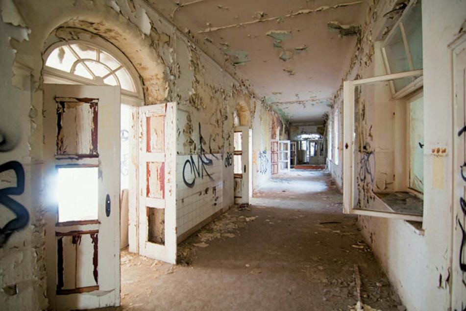 Im alten Landeskrankenhaus Meißen-Cölln blättert die Farbe von den Wänden. Wo einst Schwestern und Ärzte durch die Flure wirbelten, weht heute nur noch der Wind.