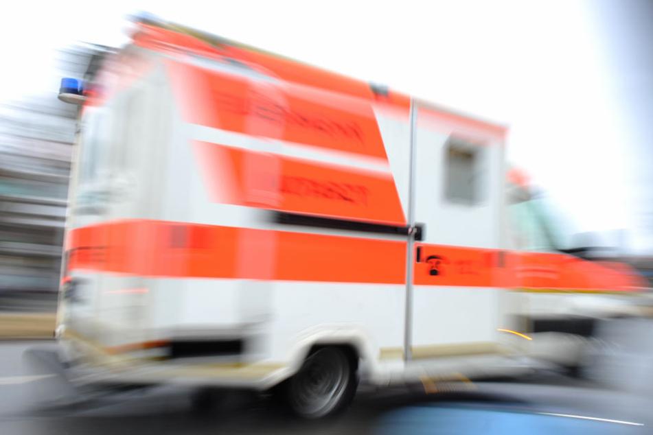 Das schwer verletzte Mädchen wurde mit dem Rettungswagen in ein Krankenhaus gebracht. (Symbolbild)