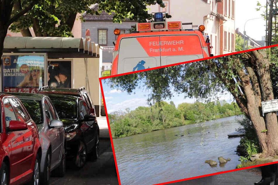 Frankfurt: Mädchen (6) stirbt, nachdem sie in Main fällt: Das sagen die Ermittler