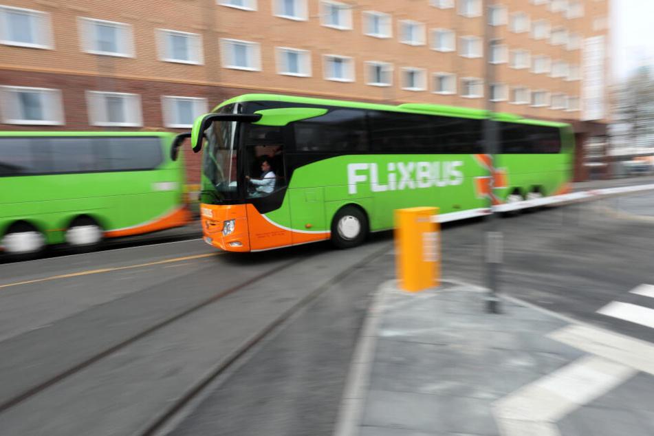 Viele verreisen auch mit dem Flixbus.