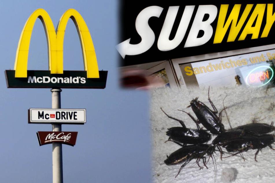 Einfach nur eklig! Schwere Hygienemängel in Fast-Food-Filialen aufgedeckt