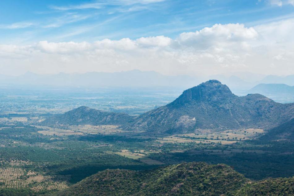 In den Westghats, ein Gebirge in Indien, wurde das bisher unbekannte Lebewesen entdeckt.