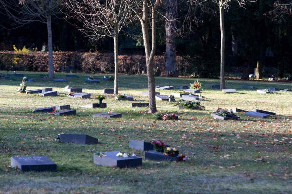 Die Zahl der Urnengräber auf dem Städtischen Friedhof wächst.