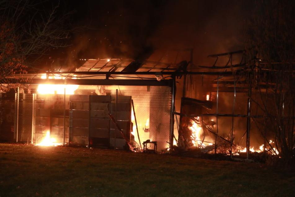 Flammen-Inferno in der Nacht zerstört Garten-Center