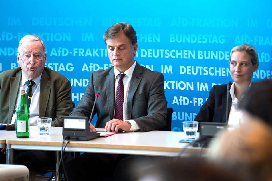 Solche Fehler(chen) ließen sich beim Aufbau einer Partei kaum vermeiden, findet Bernd Baumann, parlamentarischer Geschäftsführer der AfD. Hier wird er flankiert von Alexander Gauland (links) und Alice Weidel (rechts).