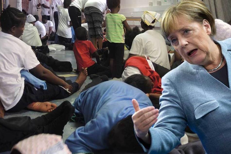 So viele Familienmitglieder von Flüchtlingen kamen bisher nach Deutschland