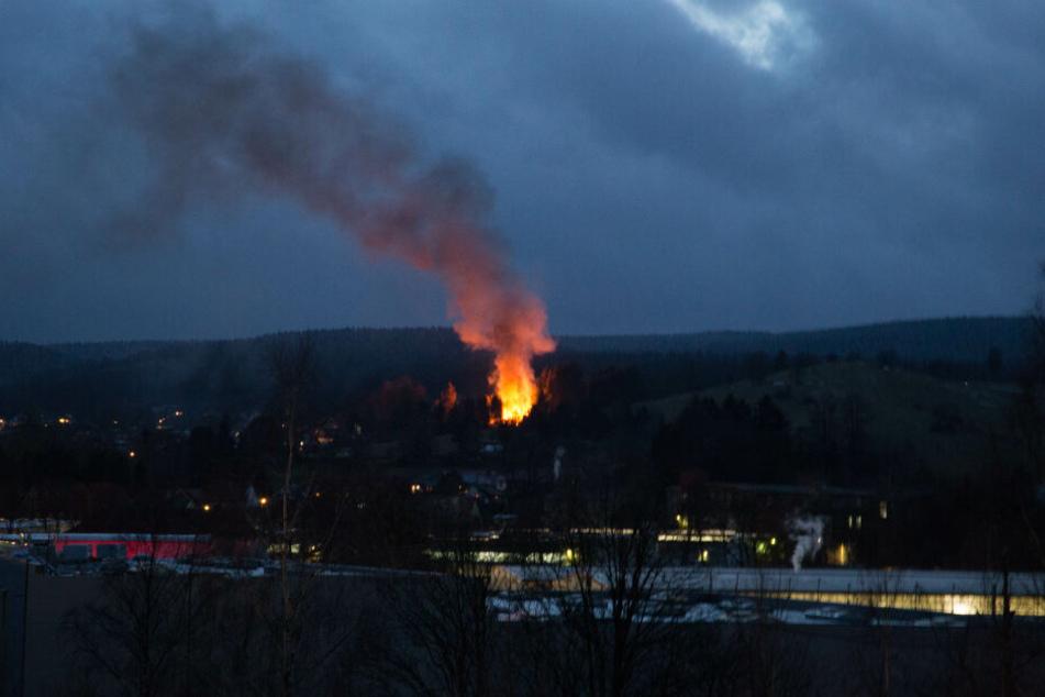 Der Brand lag mitten im Wald, war nur über kleine Wege zu Fuß zugänglich.