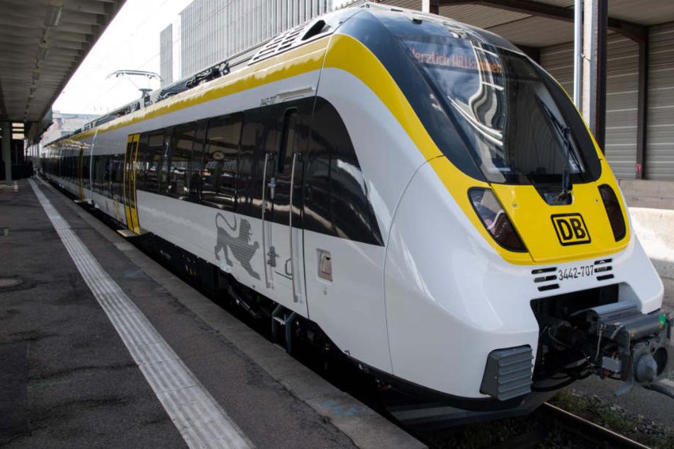 Lackiert in den Landesfarben schwarz und gelb: So sehen sie aus, die neuen Züge.