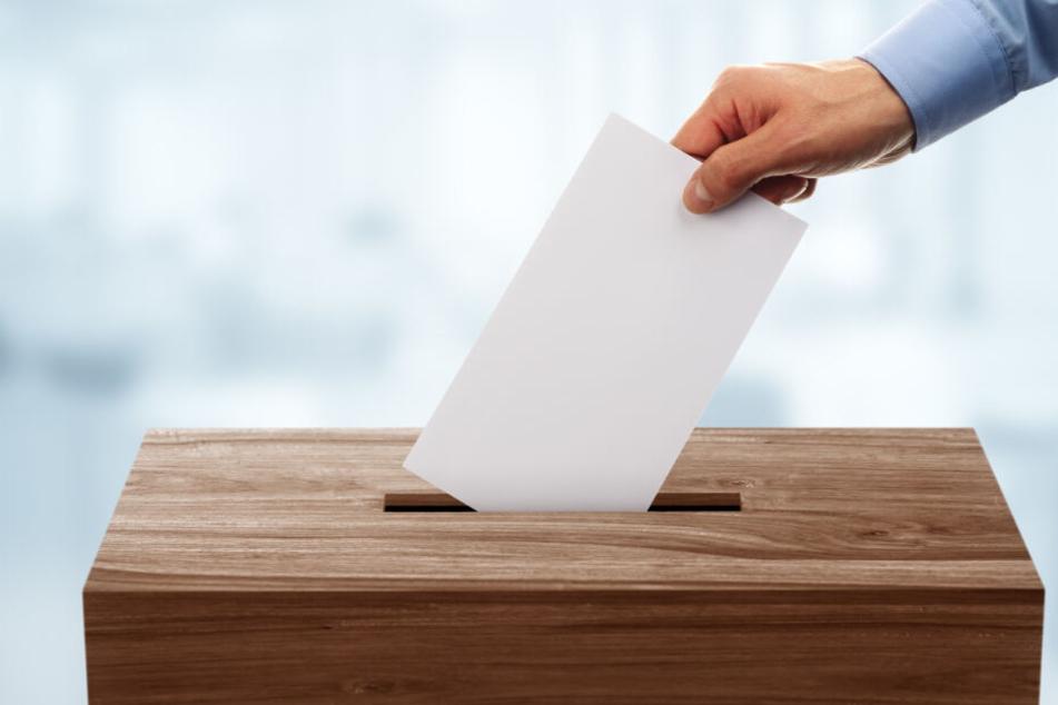 Am 01. September wird in Brandenburg ein neuer Landtag gewählt. (Symbolbild)