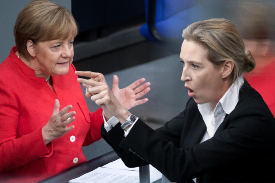 AfD-Frontfrau Alice Weidel (39) forderte Kanzlerin Angela Merkel (63, CDU) im Bundestag zum Rücktritt auf. (Bildmontage)
