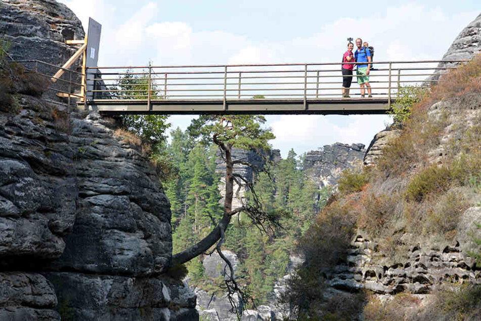 Mehrere Brücken der Felsenburg Neurathen müssen dringend saniert werden.