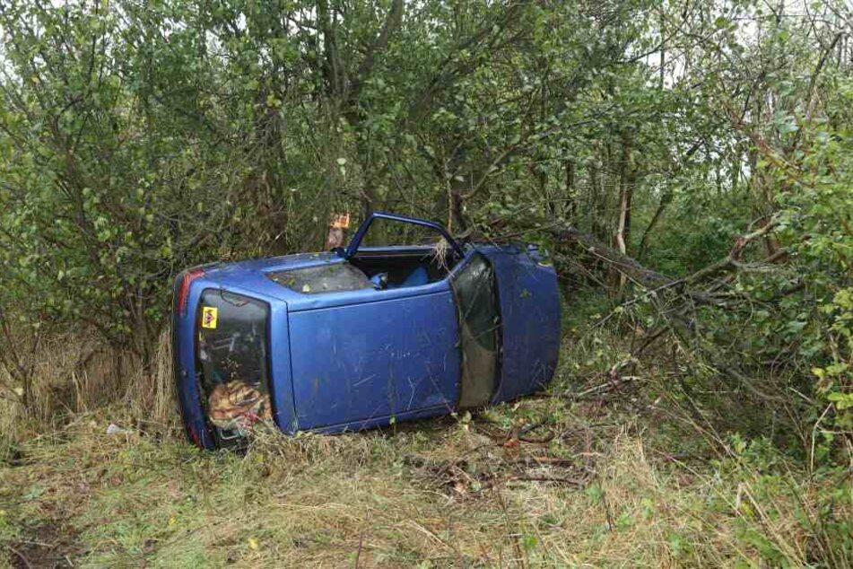 Der Peugeot landete in einem angrenzenden Waldstück.