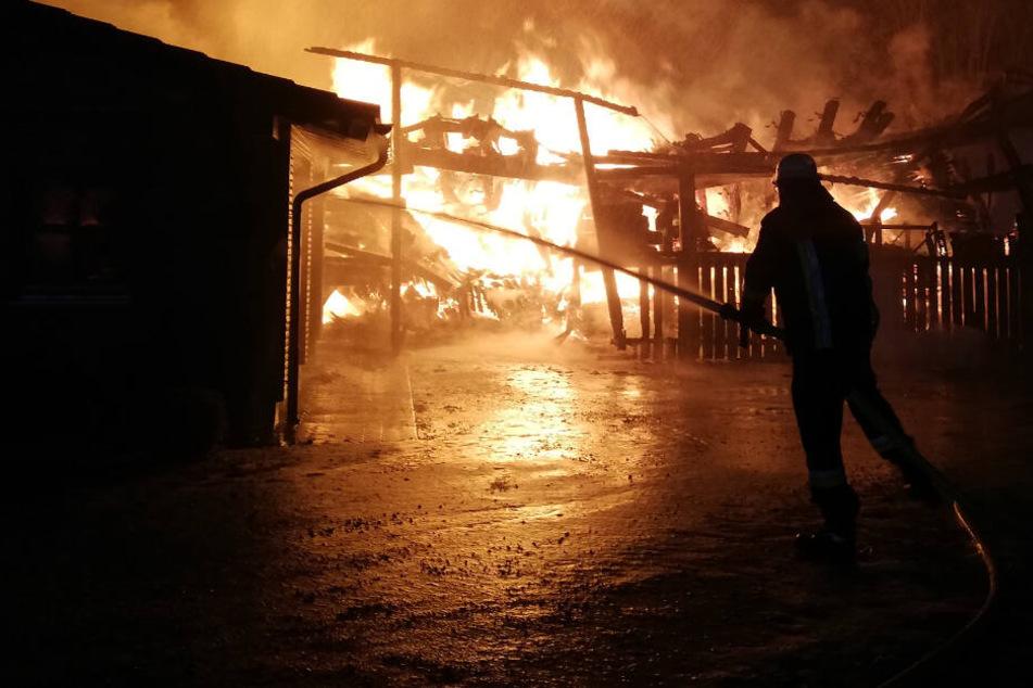 Die 75 Meter lange Fertigungs- und Lagerhalle einer Zimmerei brannte völlig aus.