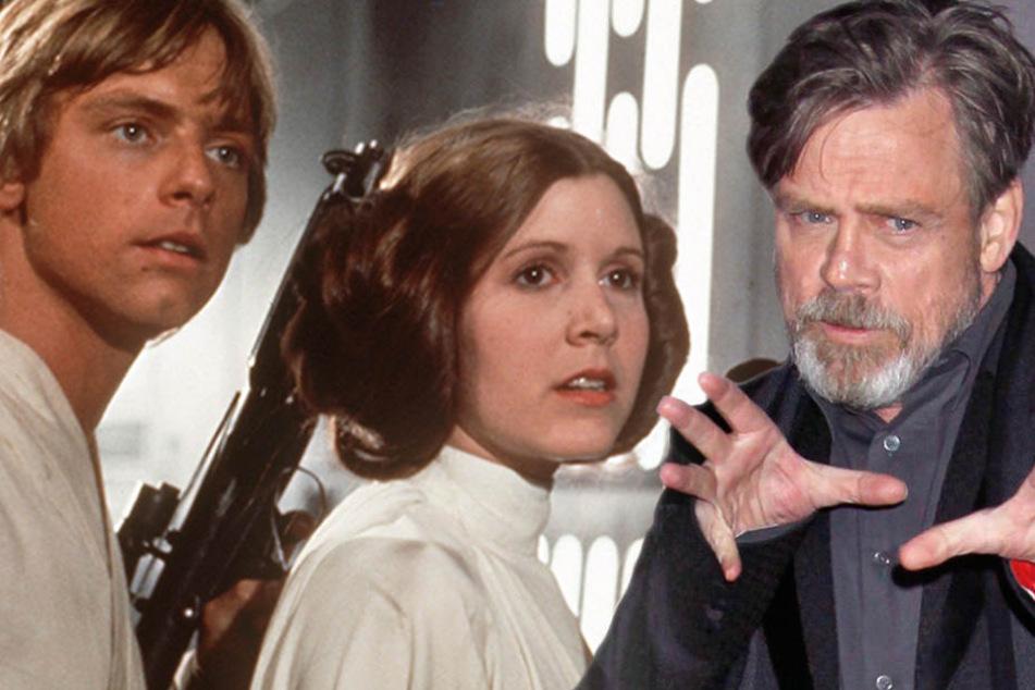 """Mit diesem Geständnis schockt Mark Hamill jeden """"Star Wars""""-Fan"""