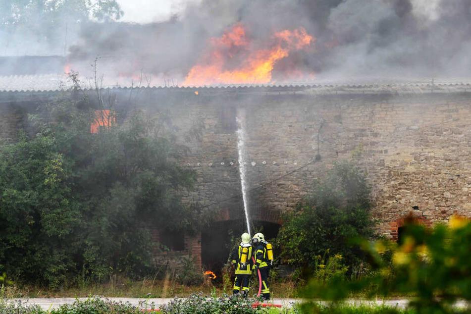 Nur wenige Tage zuvor brannte es in einer alten Lagerhalle in Etgersleben.