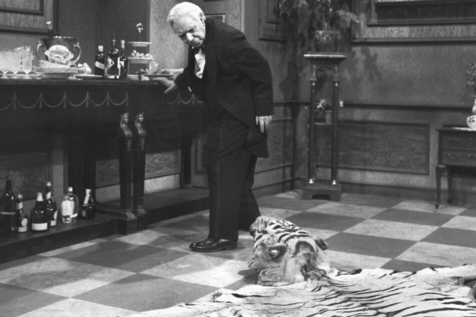 Im Verlauf des Film stolpert Butler James mehrmals über den Kopf des Tigers.