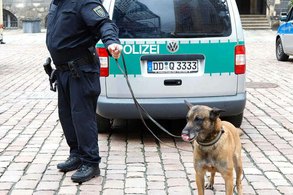 Insgesamt 54 Polizeikräfte waren im Einsatz. Mit mehreren Sprengstoffspürhunden wurde das komplette Rathaus durchsucht.