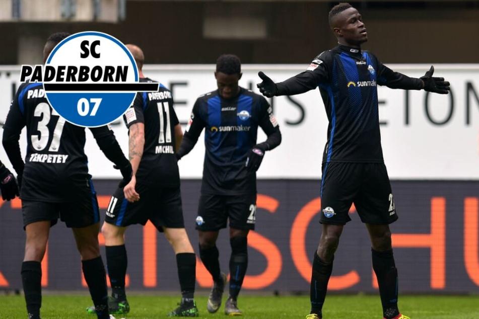 """""""Wahnsinnige Gier"""": Schafft der SCP den Sprung in die erste Liga?"""