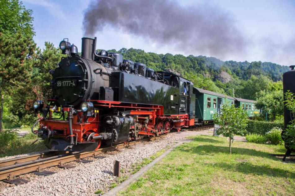 Die Weißeritztalbahn fährt zwischen Freital und Kipsdorf.