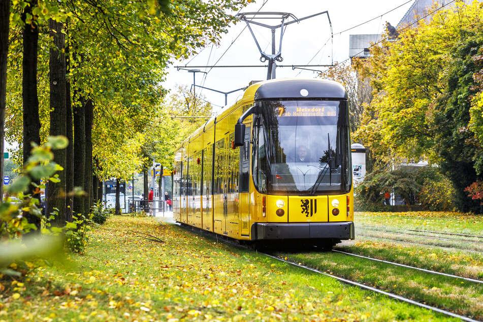 Eine Straßenbahn im spätsommerlichen Dresden. (Symbolbild)