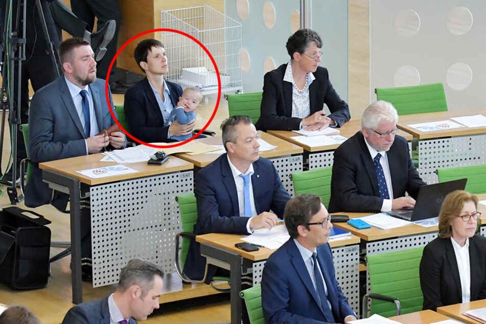 Parteiaustritt: So schrumpft Petry Sachsens AfD-Fraktion