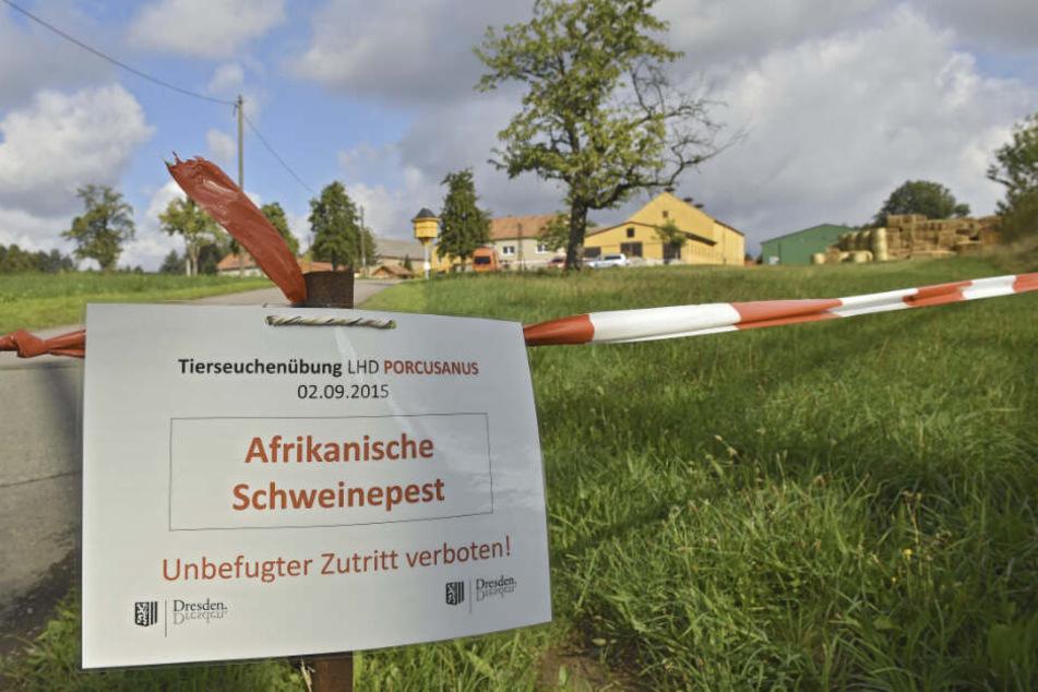 In Dresden erprobten Feuerwehr, Veterinäramt und Rathaus bereits 2015 das richtige Verhalten bei Ausbruch der Seuche.