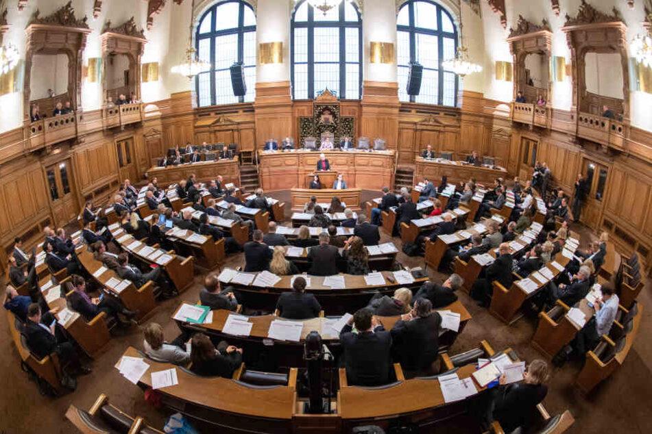 Auch in der Politik unterrepräsentiert: Im Februar wurde in Hamburg Parité-Gesetz diskutiert, das einen gleichen Frauen- und Männeranteil in der Partei-Kandidatenliste vorsieht.